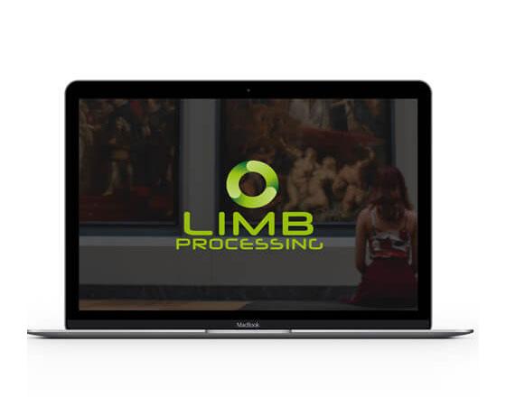 LIMB Processing